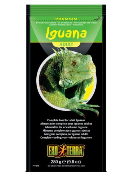Exo Terra Iguana Adult