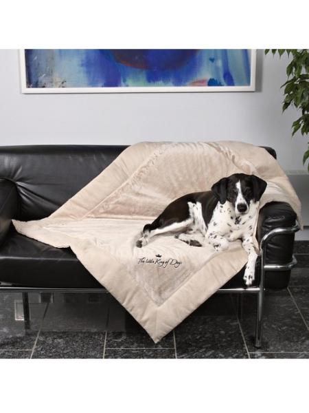 Hundekönig Decke verschiedene Grössen