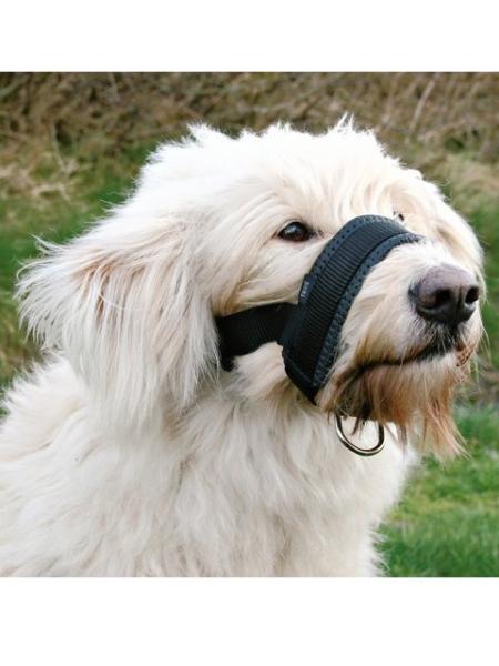 Hunde Maulschlaufe Nylon