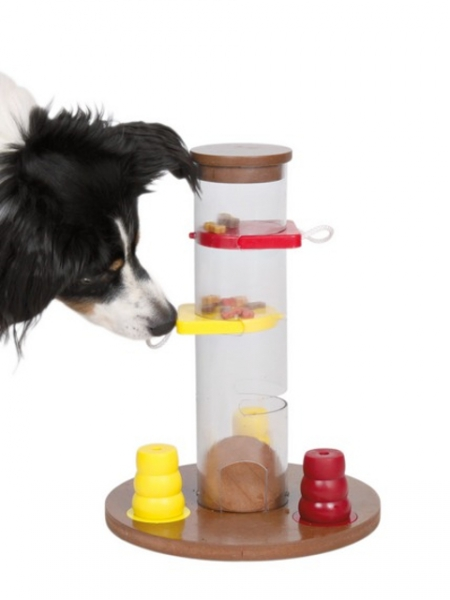Dog Activity Strategiespiel Gambling Tower