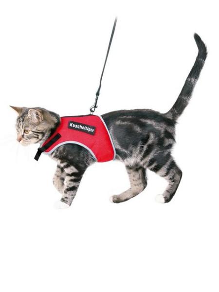 XCat Katzengeschirr mit Leine