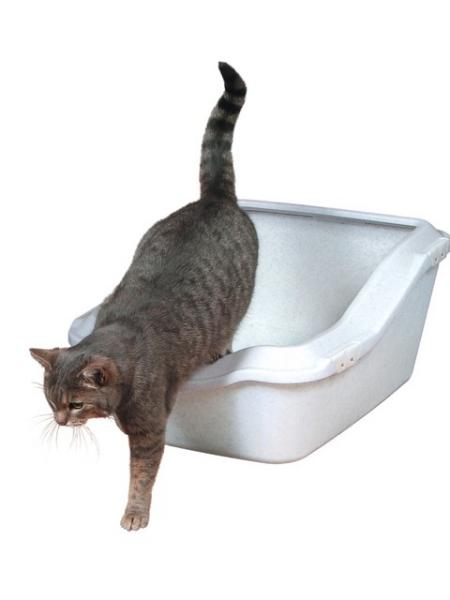 Katzentoilette Cleany Cat 45 × 21× 54 cm